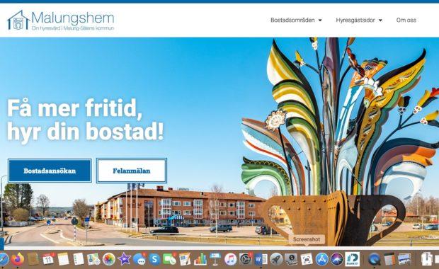 Malungshem vill digitalisera med Akribi